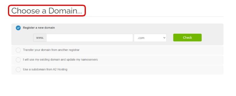 a2-hosting-domain-name