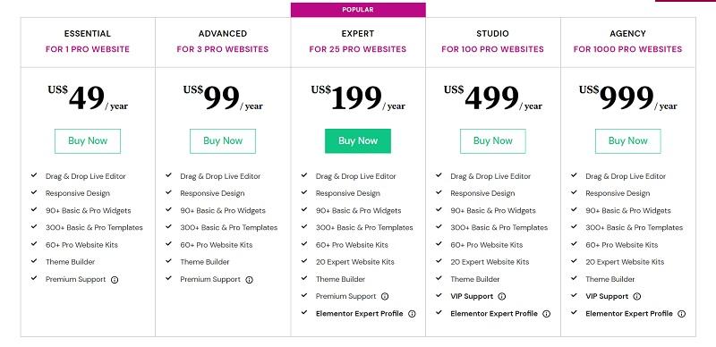 Elementor pricing