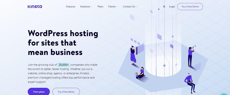 kinsta company for managed wordpress hosting